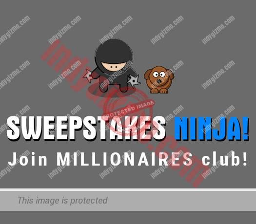 Sweepstakes Ninja