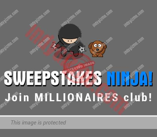 41% Off – Sweepstakes Ninja Coupon Codes